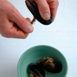 cleaning-mussels_step1
