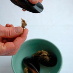 cleaning-mussels_step2