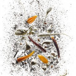 195-Carrots-Roasted-in-Coffee-Beans