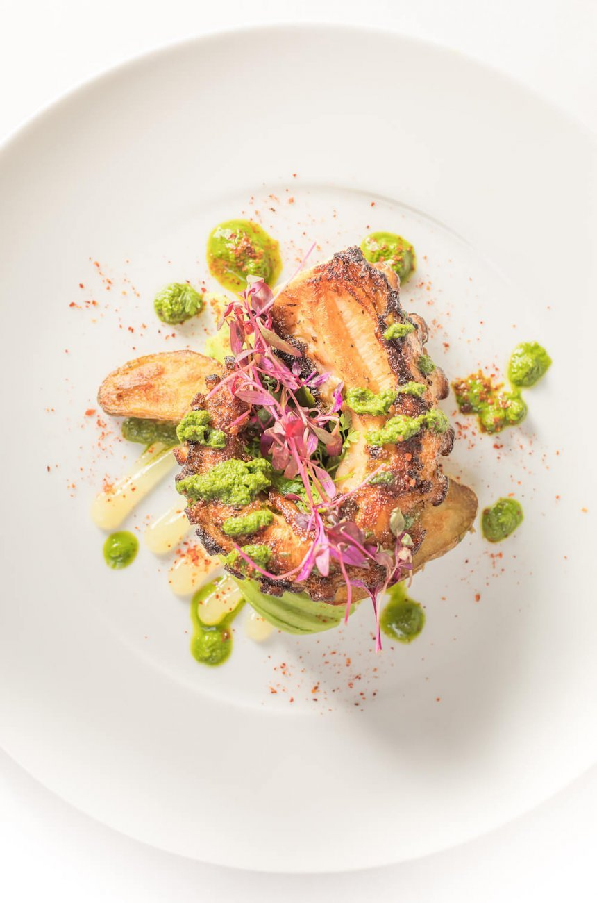 GREEK OCTOPUS RECIPE BY CHEF ANTHONY THEOCAROPOULOS