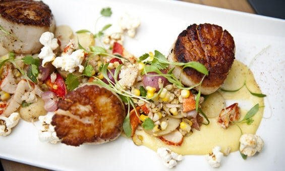 SCALLOPS, LOBSTER, FINGERLING HASH AND CORN SAUCE