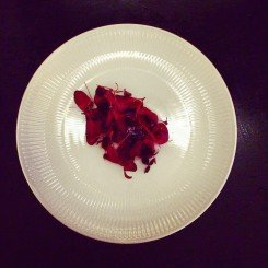 Danish Wood Pigeon in a Cherry Sauce