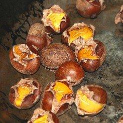 Roasting-Chestnutsd