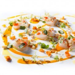 Scallop crudo with Carrot vin edit