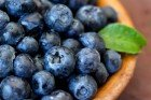 antioxidantsnew