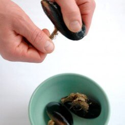 cleaning-musselsa