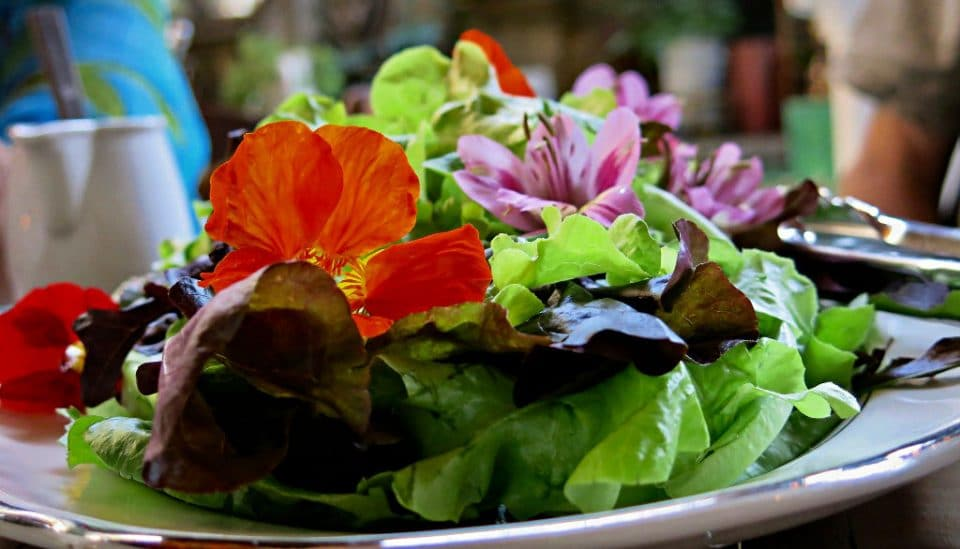 Salad with edible flowers